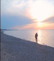 clare-shore